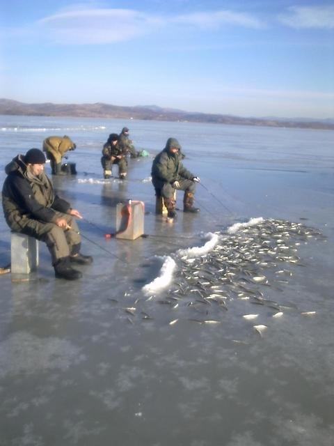 организованный выезд на рыбалку