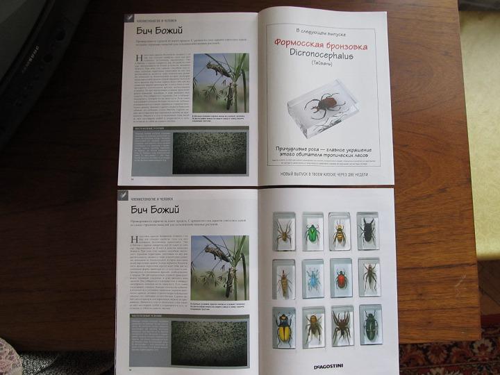 журнал настоящие насекомые и их знакомые