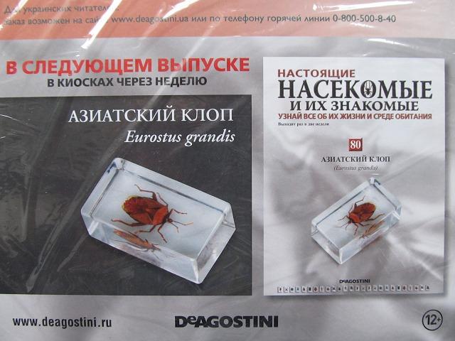 выпуск насекомые и их знакомые 11