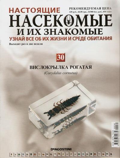 Насекомые №30 Вислокрылка Рогатая (Corydalus cornutus) фото, обсуждение