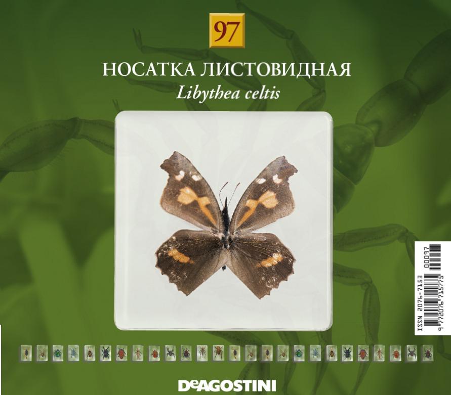 насекомые и их знакомые 2012