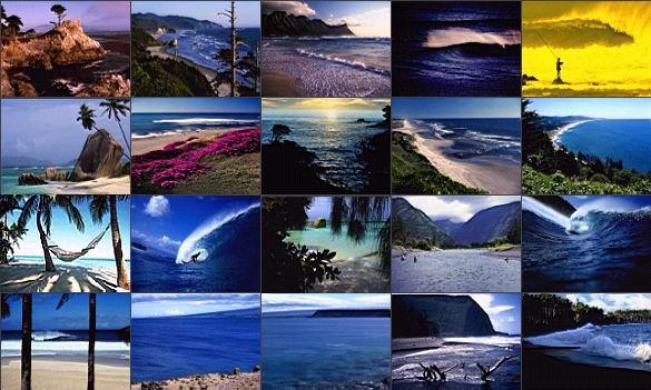Nature screensavers