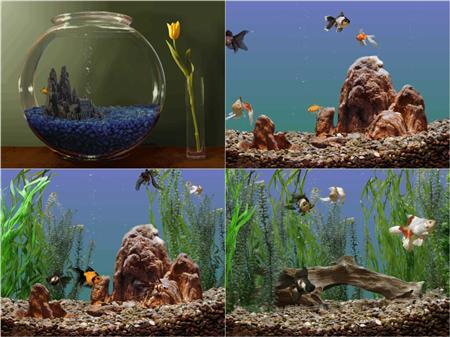 Aquarium Screensave 3