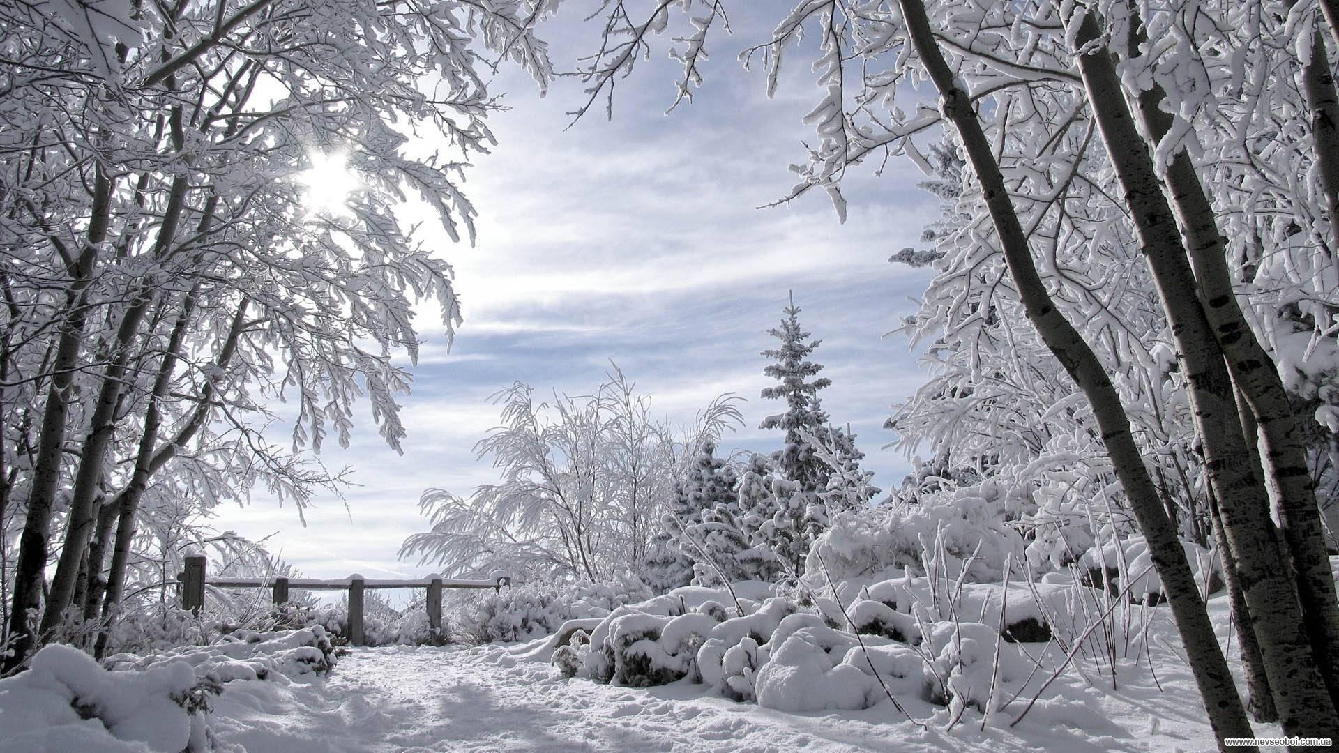Image result for зима в россии фотографии