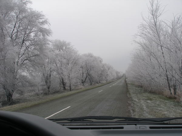 Зима!!!!Снежная  сказка! 696557