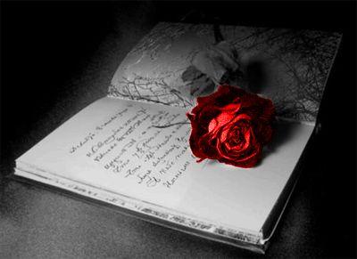 Стихи   от  Новороссиянки... 705301