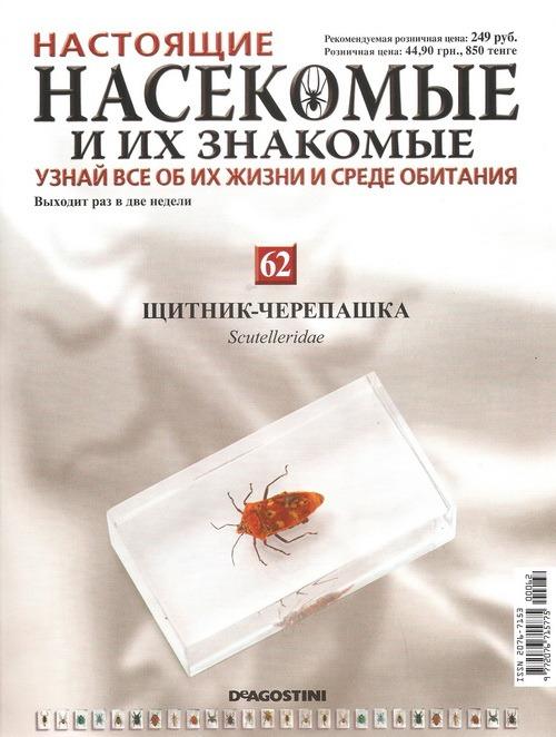 Насекомые №62 Щитник-черепашка, Клоп краевик