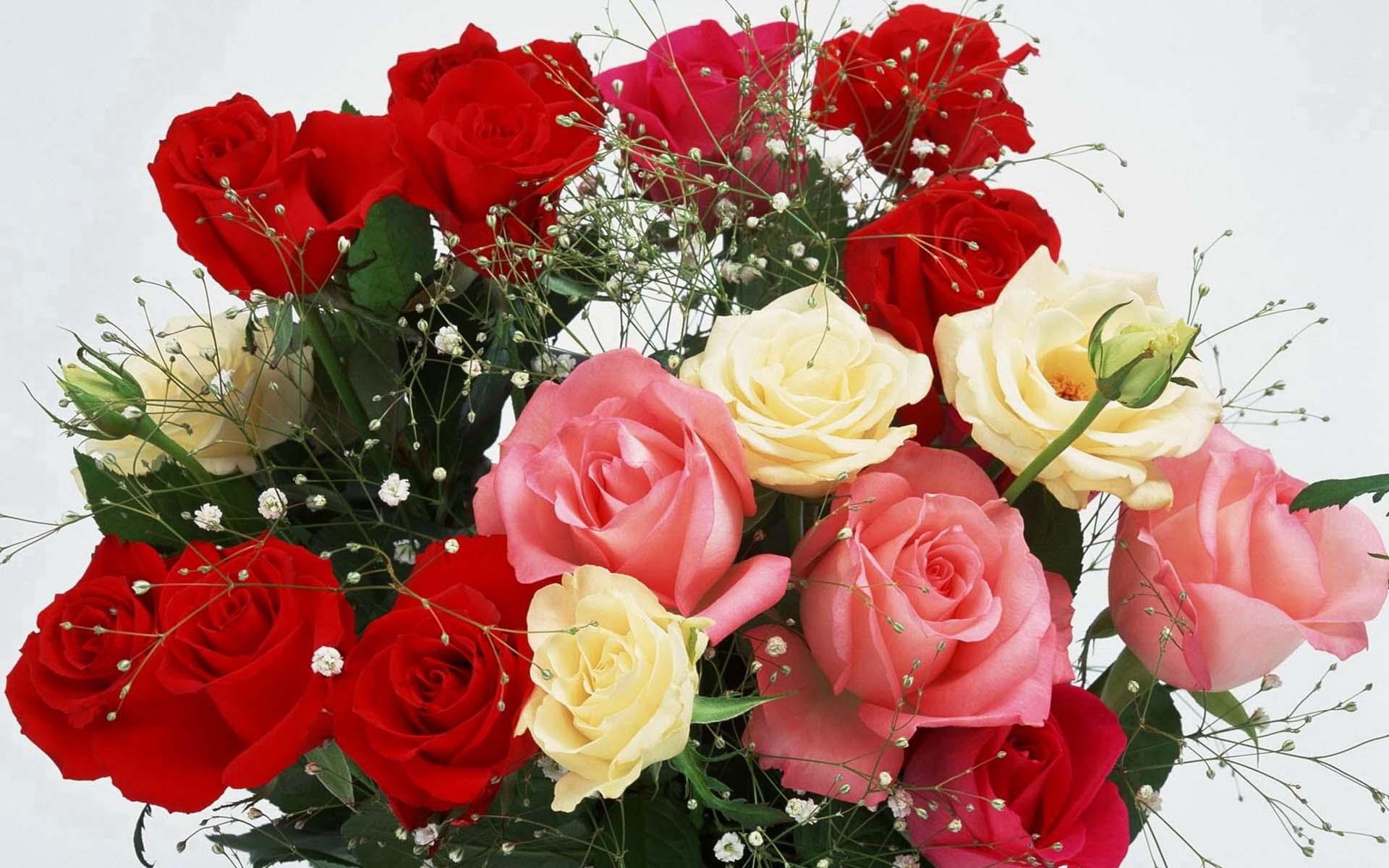 Цветы букеты сад поздние цветы