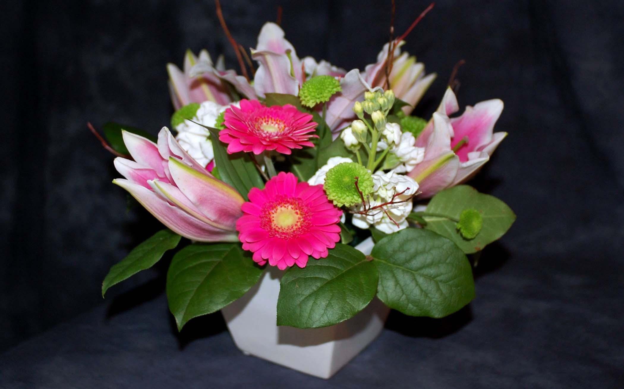Фото цветов анютины глазки