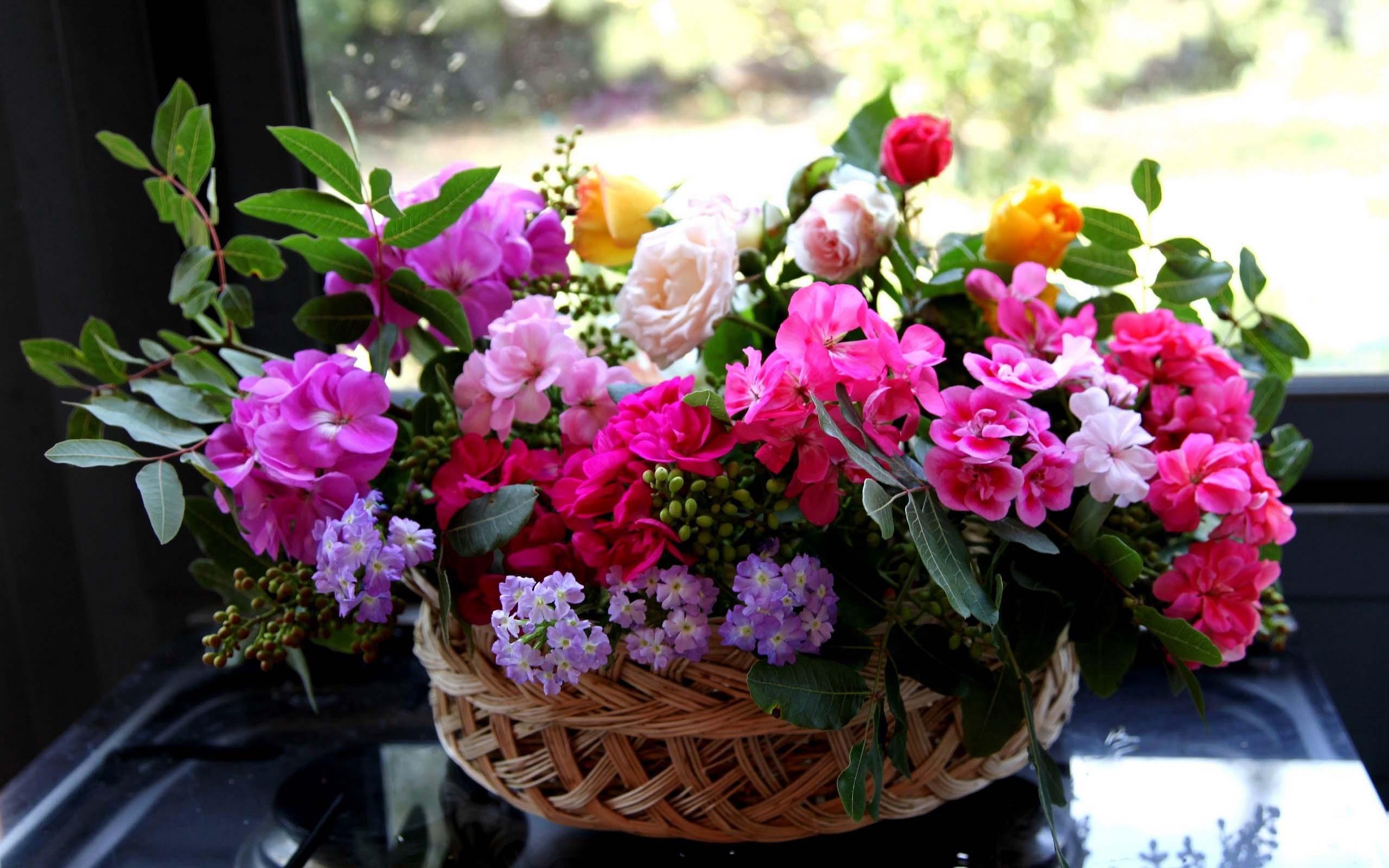 Широкоформатные обои для рабочего стола розы