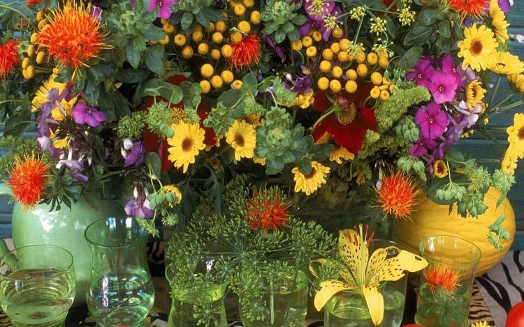 Цветы Букеты Обои рабочий стол: fon1.ru/load/66-1-0-5380