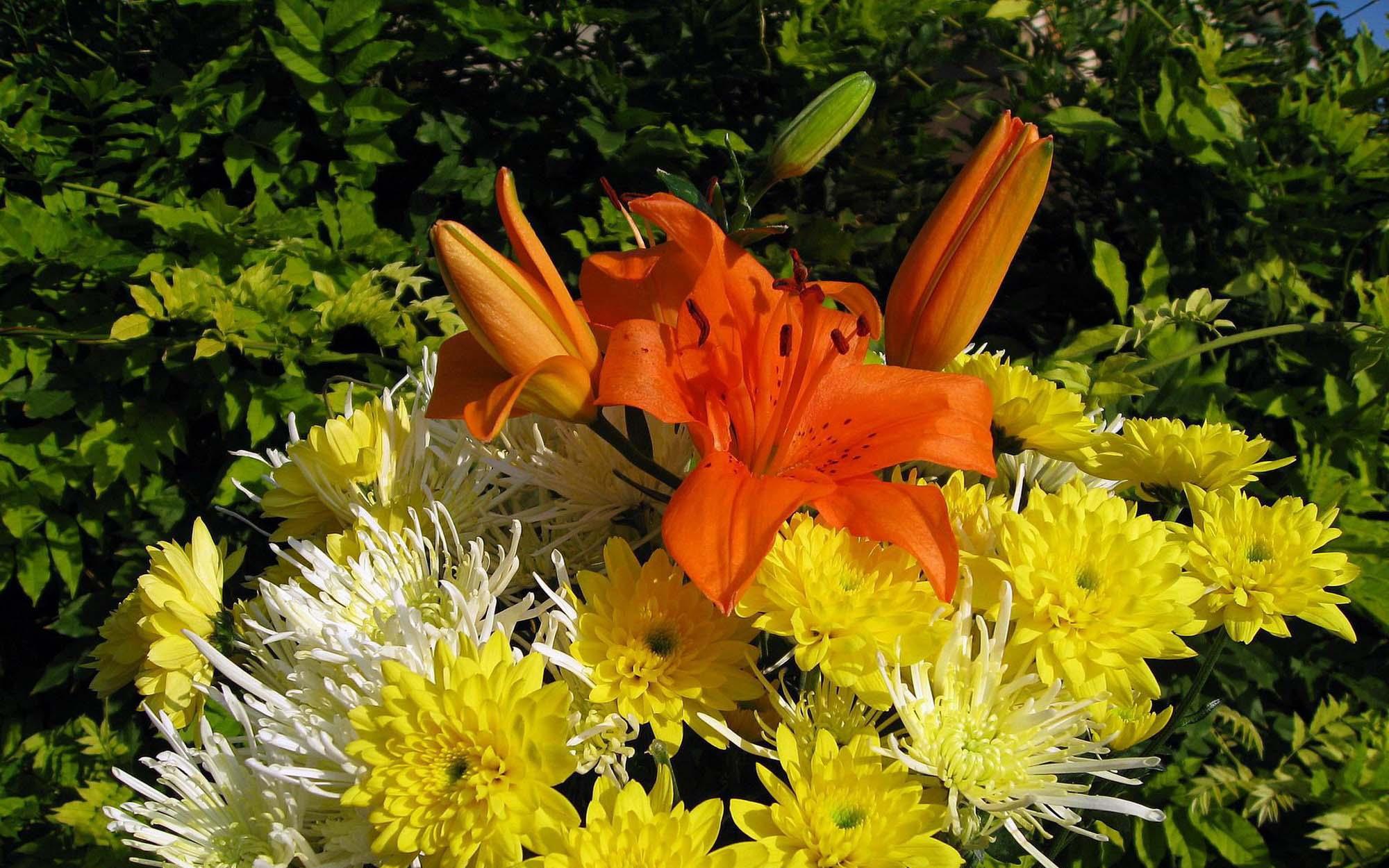 Цветы букеты картинки фото