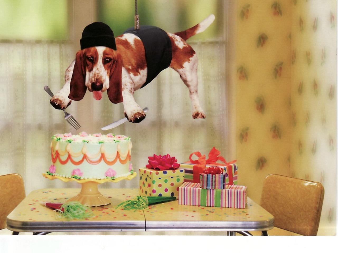 Необычные прикольные поздравления с днем рождения