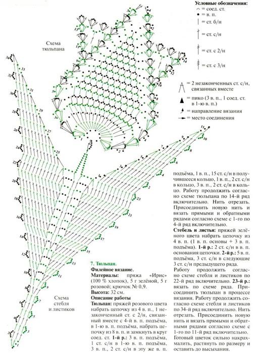 Схема и описание листьев