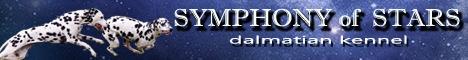 kennel dalmatian SYMPHONY of STARS