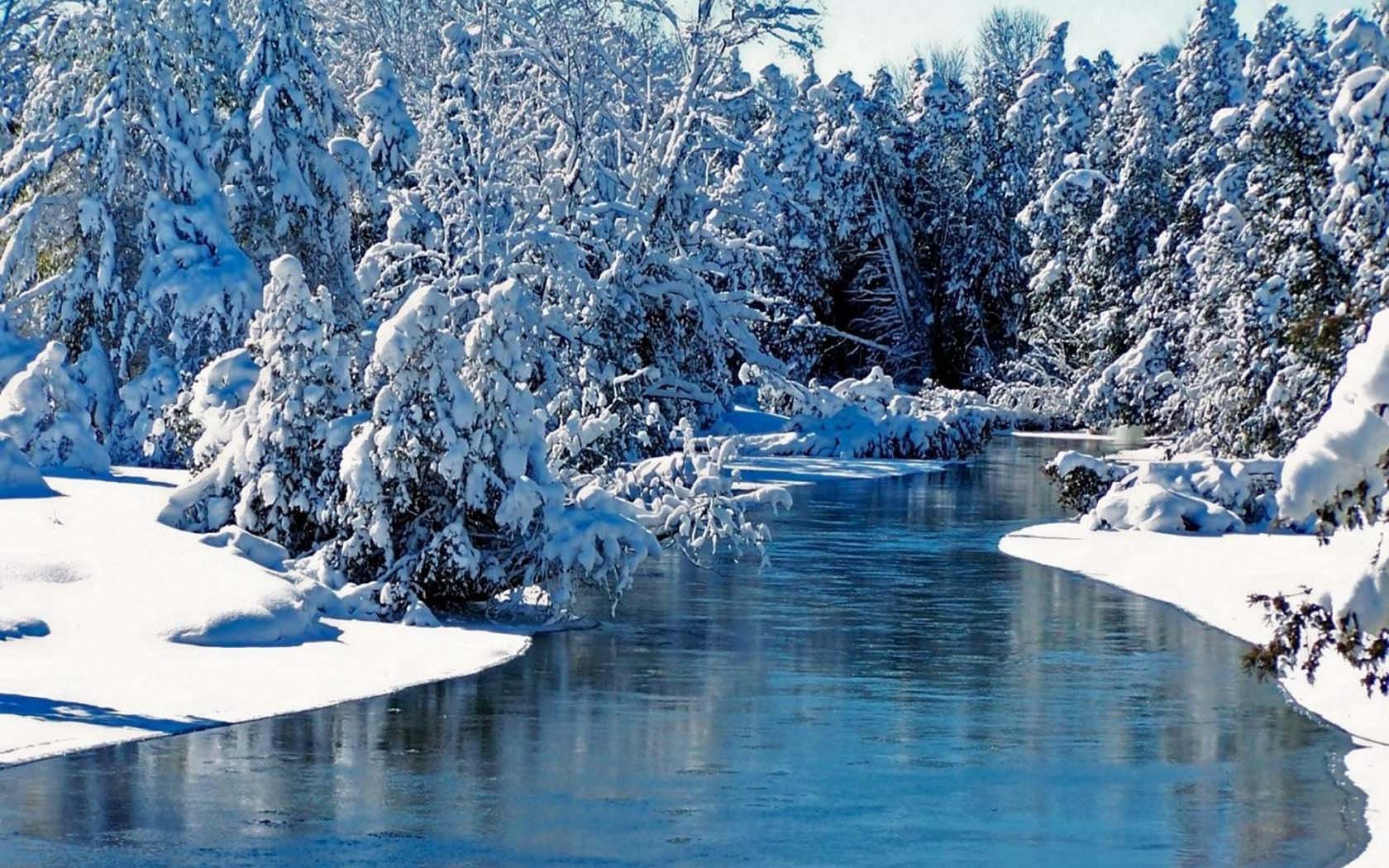 Природа зимой фото для детей