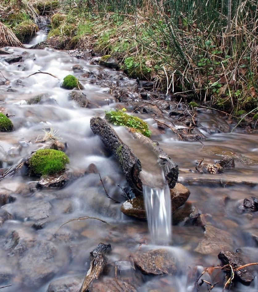 С наступлением весны от избытка талых вод многие территории страдают