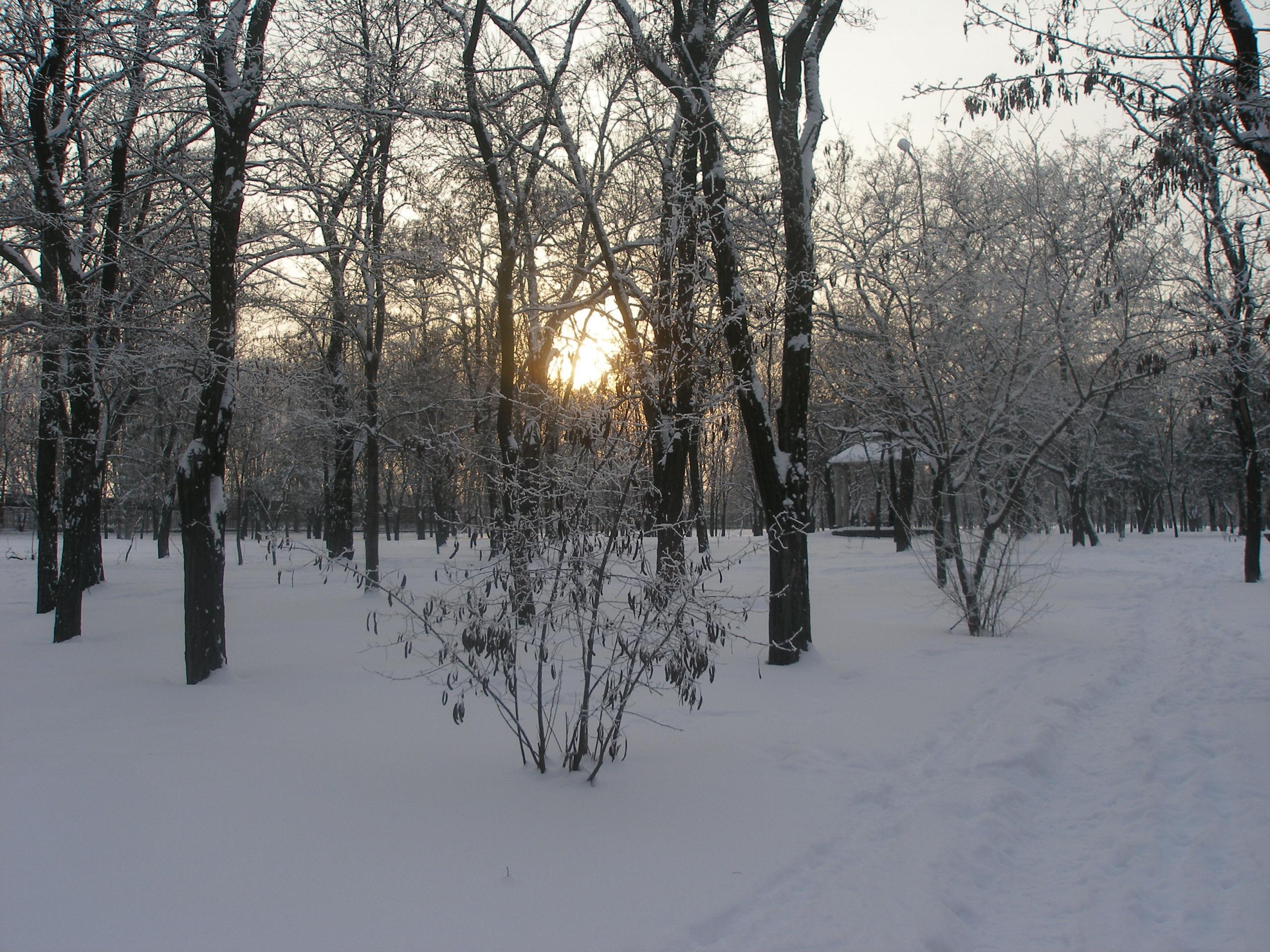 Зима!!!!Снежная  сказка! - Страница 2 1498680