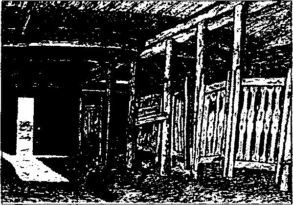 Дворовой 1641104