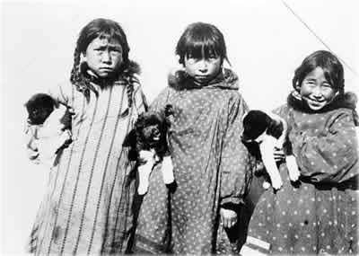 История пород северных собак 1660823