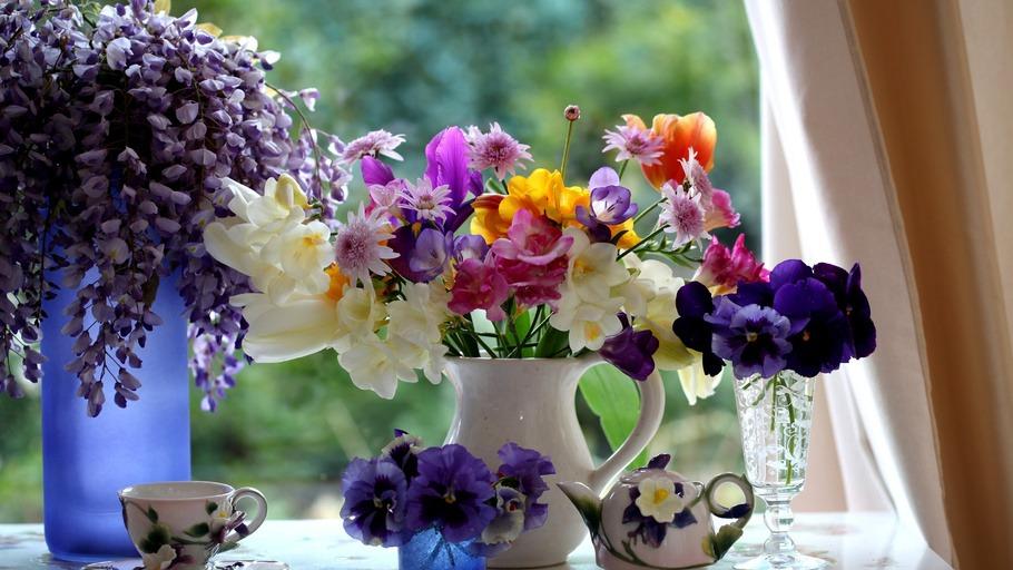 Гугл цветы картинки 4
