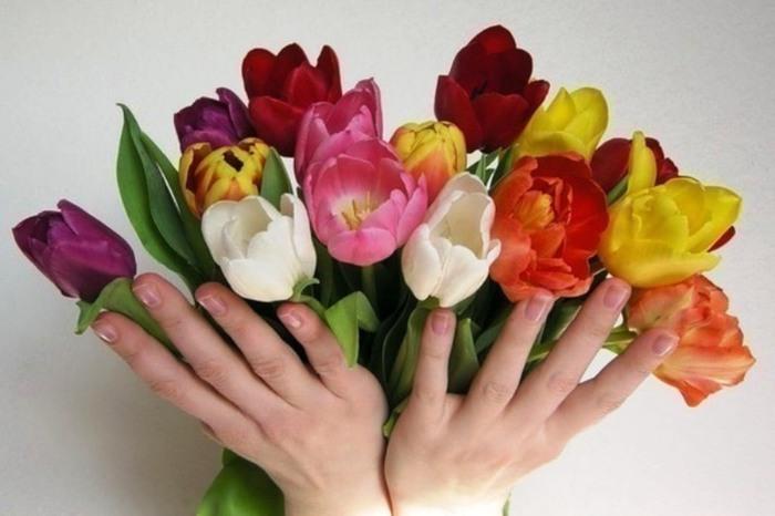 Открытка рука с тюльпанами