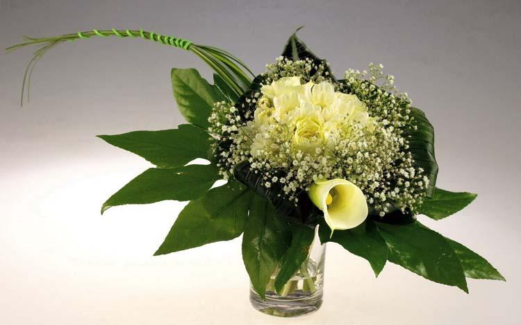 стол фото букеты растения цветы ...: fon1.ru/load/66-1-0-23856