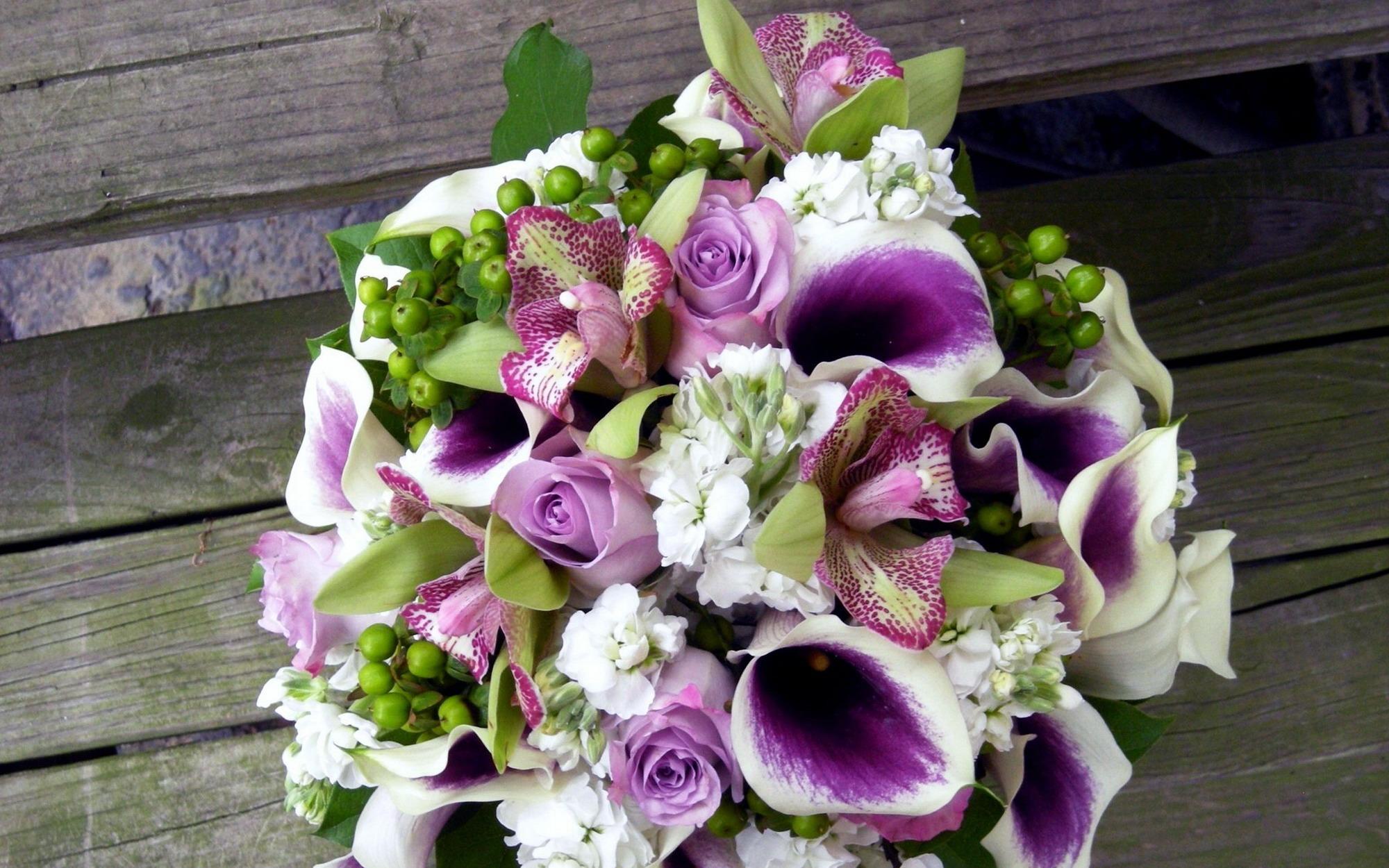 Многолетние цветы для дачи фото названия и описания
