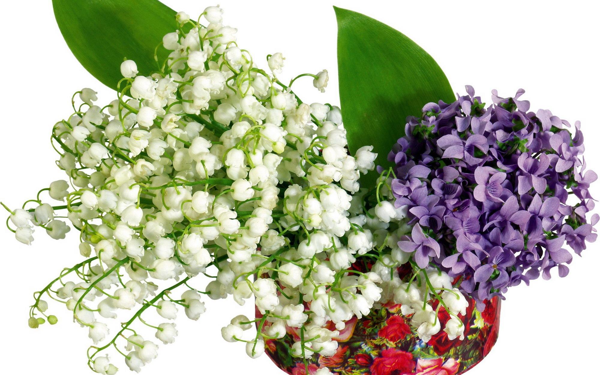 Букет цветов для мужчины с фото Купить цветы мужчине