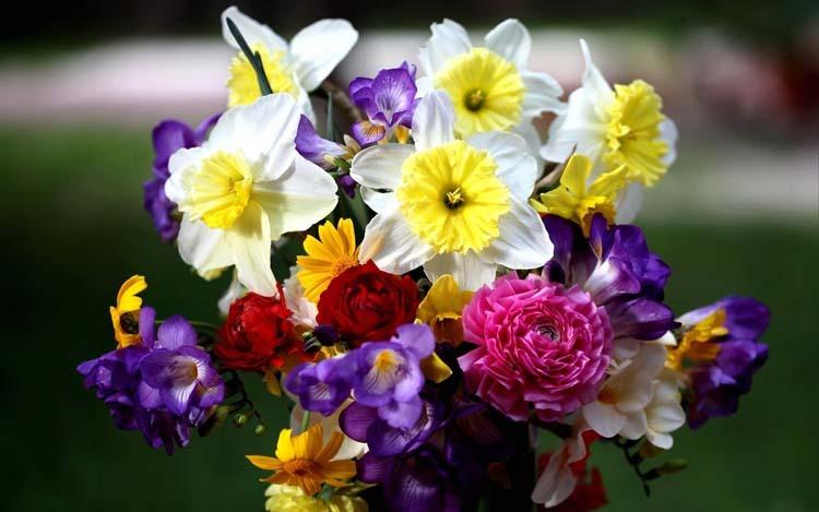 стол цветочные композиции фото букеты ...: fon1.ru/load/66-1-0-24101