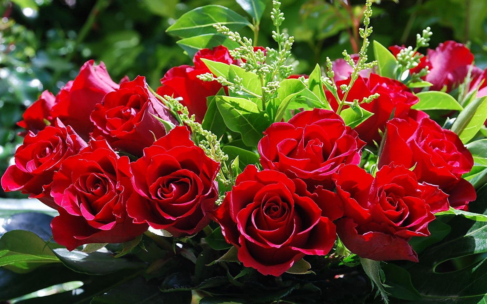 Доставка цветов на дом цветы с доставкой в день заказа