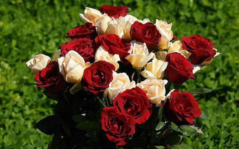 Композиции из живых цветов в корзине обзор  ФОТО!