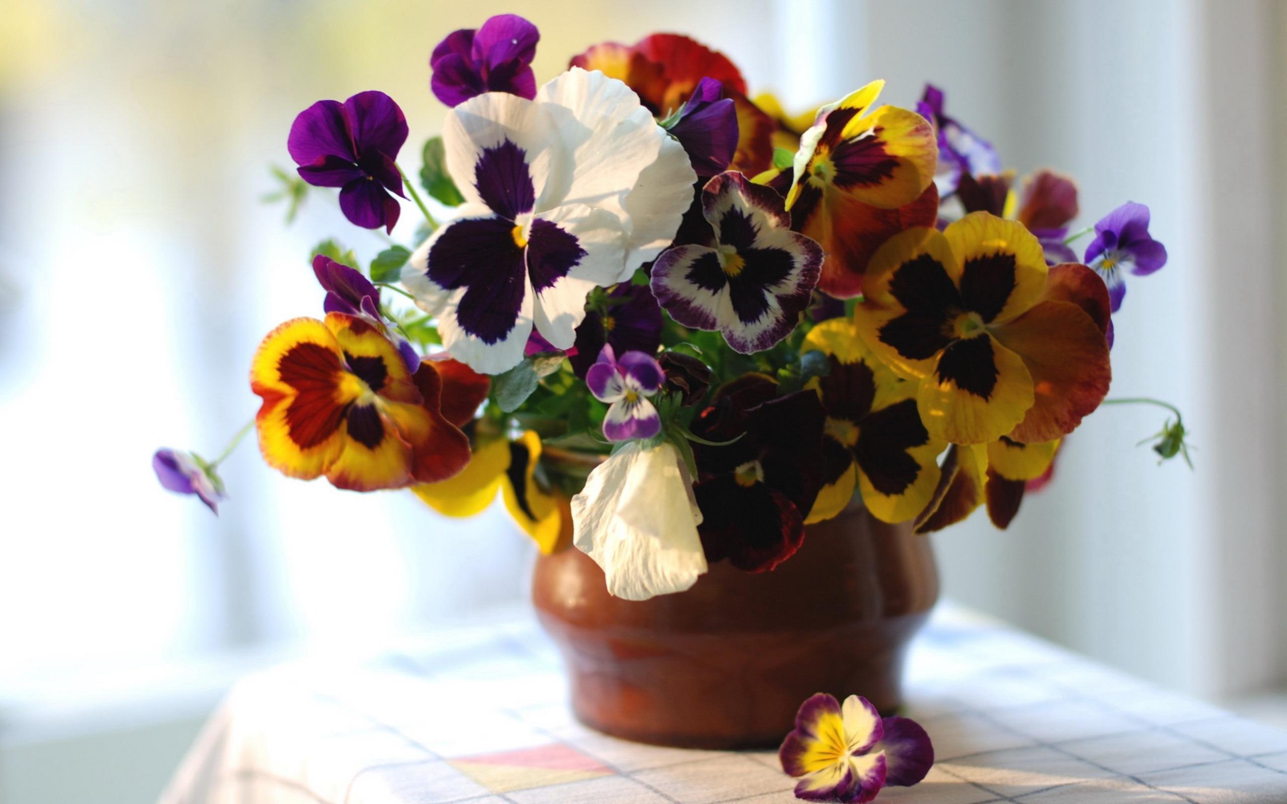 Цветы картины букеты