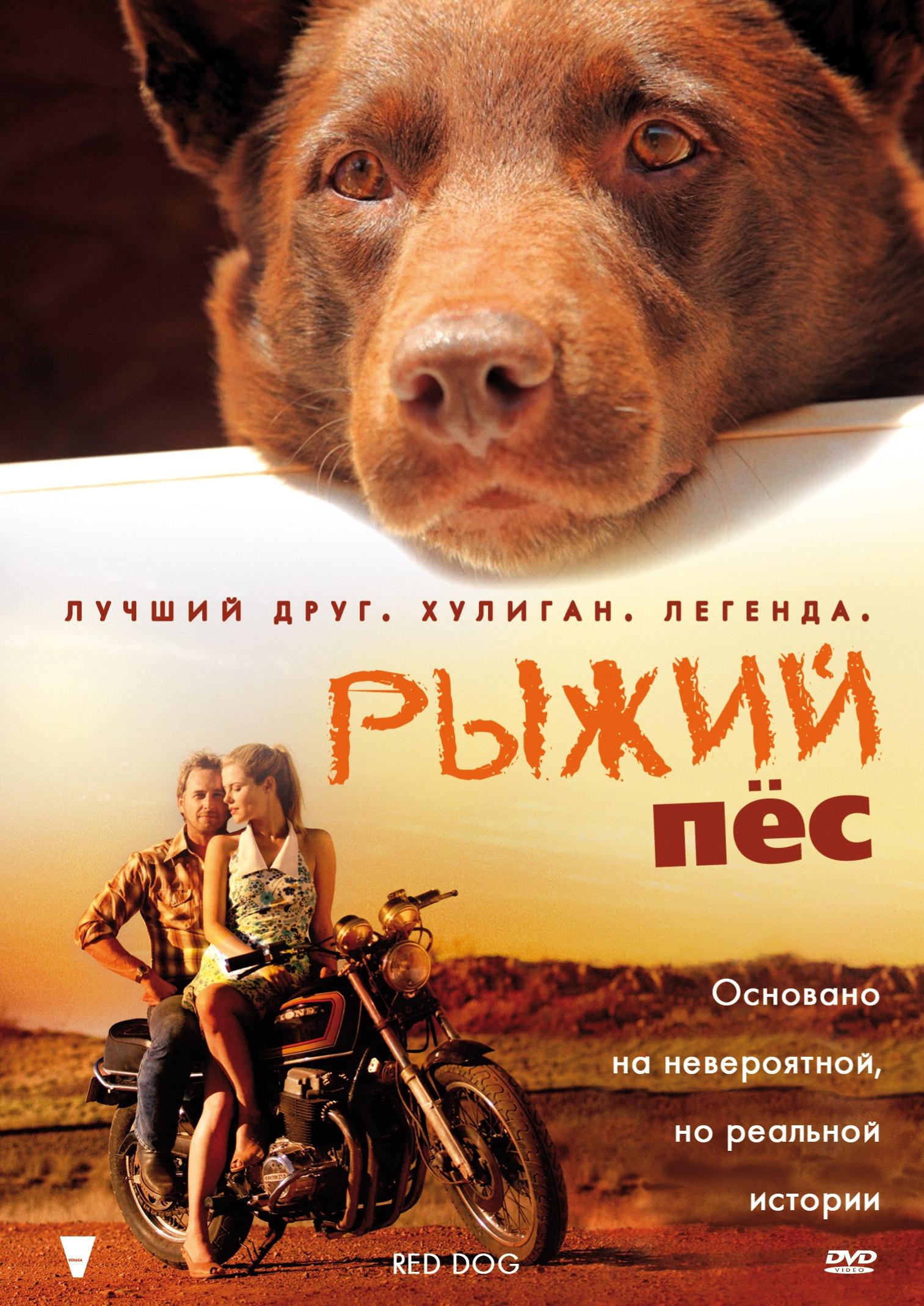 фильм глубоко в глотку: