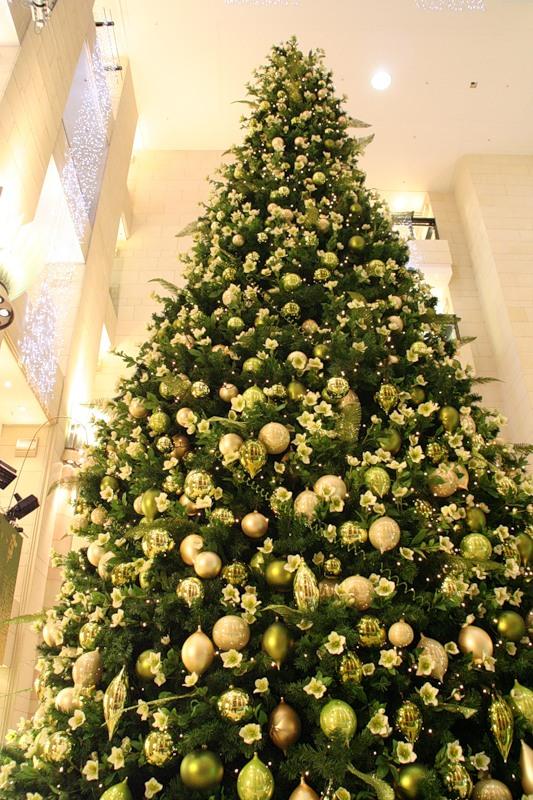 Как же без елки. .  Почему именно елка новогодняя стала символом Нового года и Рождества? .