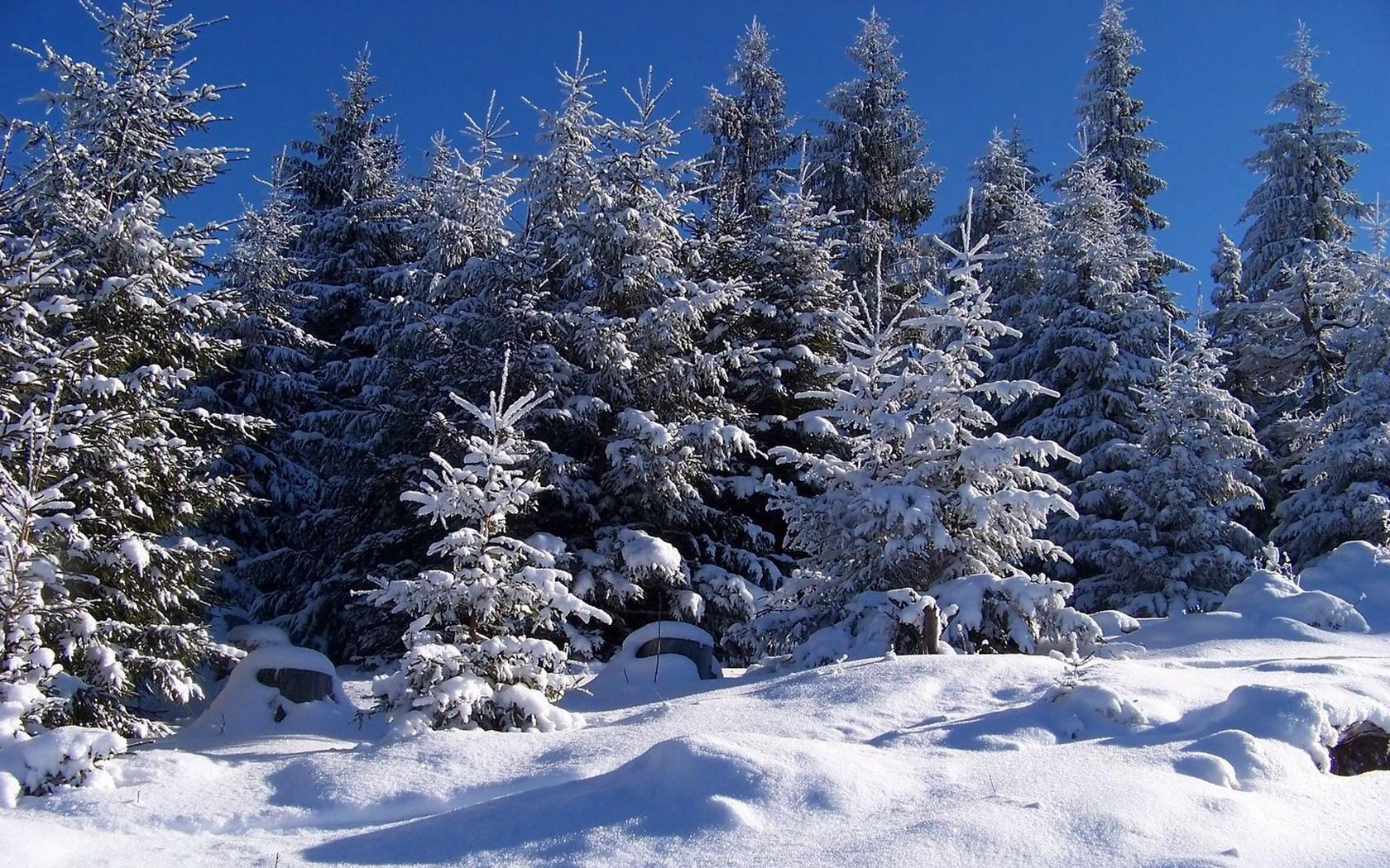 Зима новый год картинка на рабочий стол