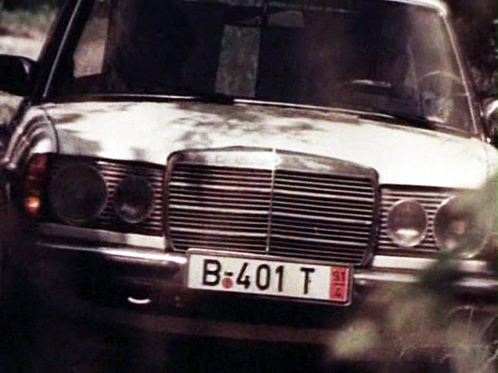 2505230.jpg