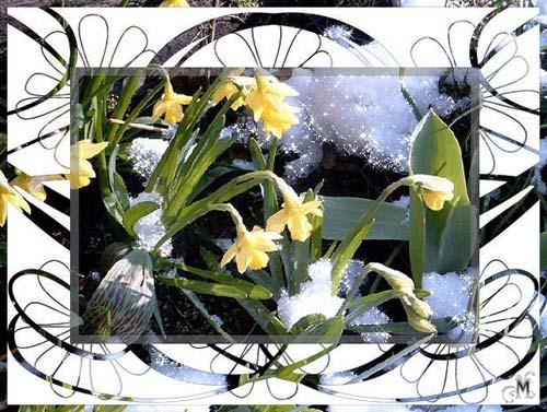 Весна Анимированные Картинки Открытки