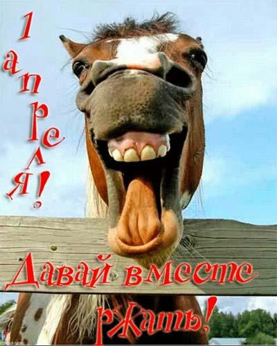 1 Апреля День Смеха Анимированные Картинки Открытки Gif