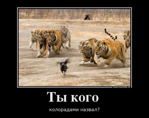 http://4put.ru/pictures/max/924/2840461.jpg