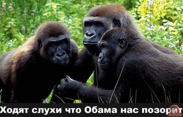http://4put.ru/pictures/max/925/2841742.jpg