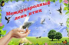 день птиц, календарь дат,библиотека-филиал17 жукова,симферополь,