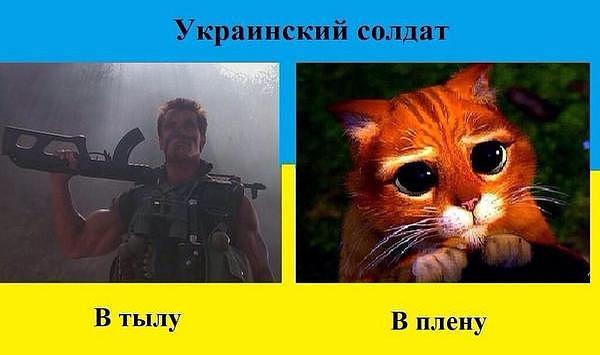 http://4put.ru/pictures/max/960/2950158.jpg