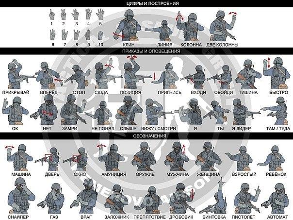программа где показывают оружие разных банд стран и спецподразделений