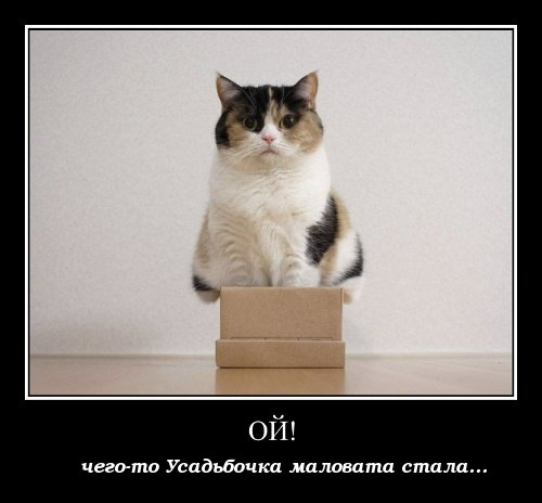 http://4put.ru/pictures/max/985/3028515.jpg