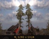 310848.jpg