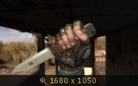 3164911.jpg