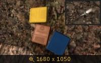 3373567.jpg