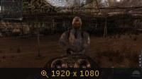 3467808.jpg