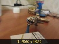 3505804.jpg